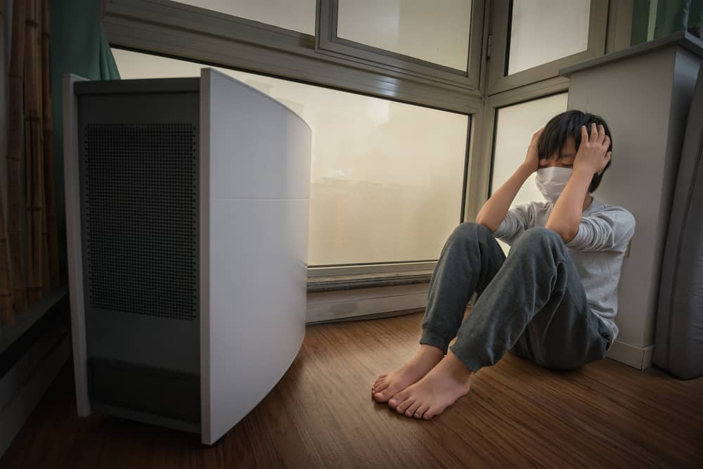 What Kind of Air Purifier Is Best If You Have Allergies?